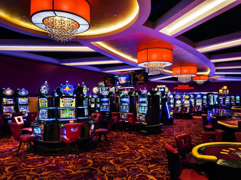 Which online casino game is better to choose?